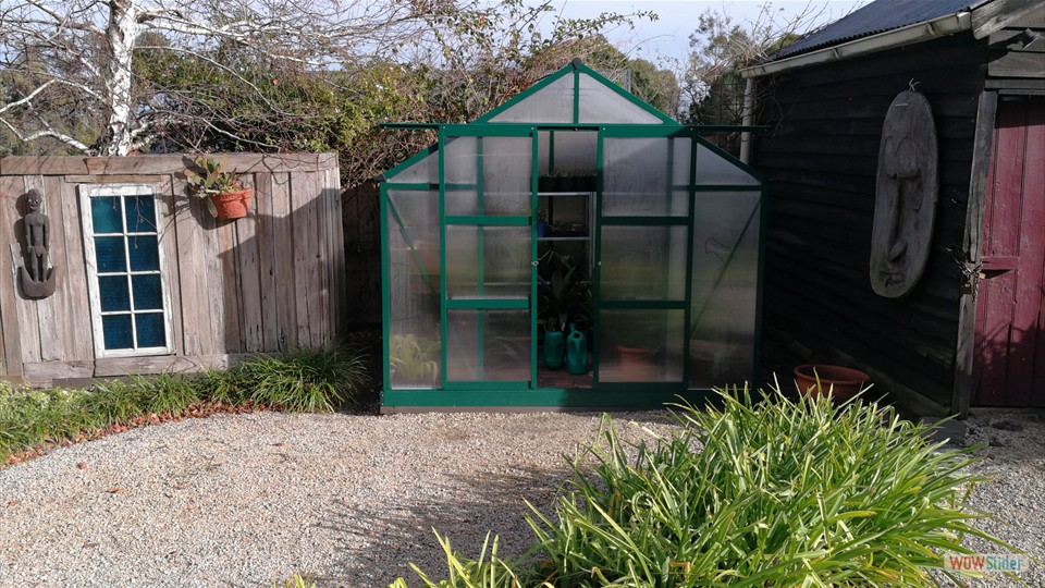 Desi's first greenhouse